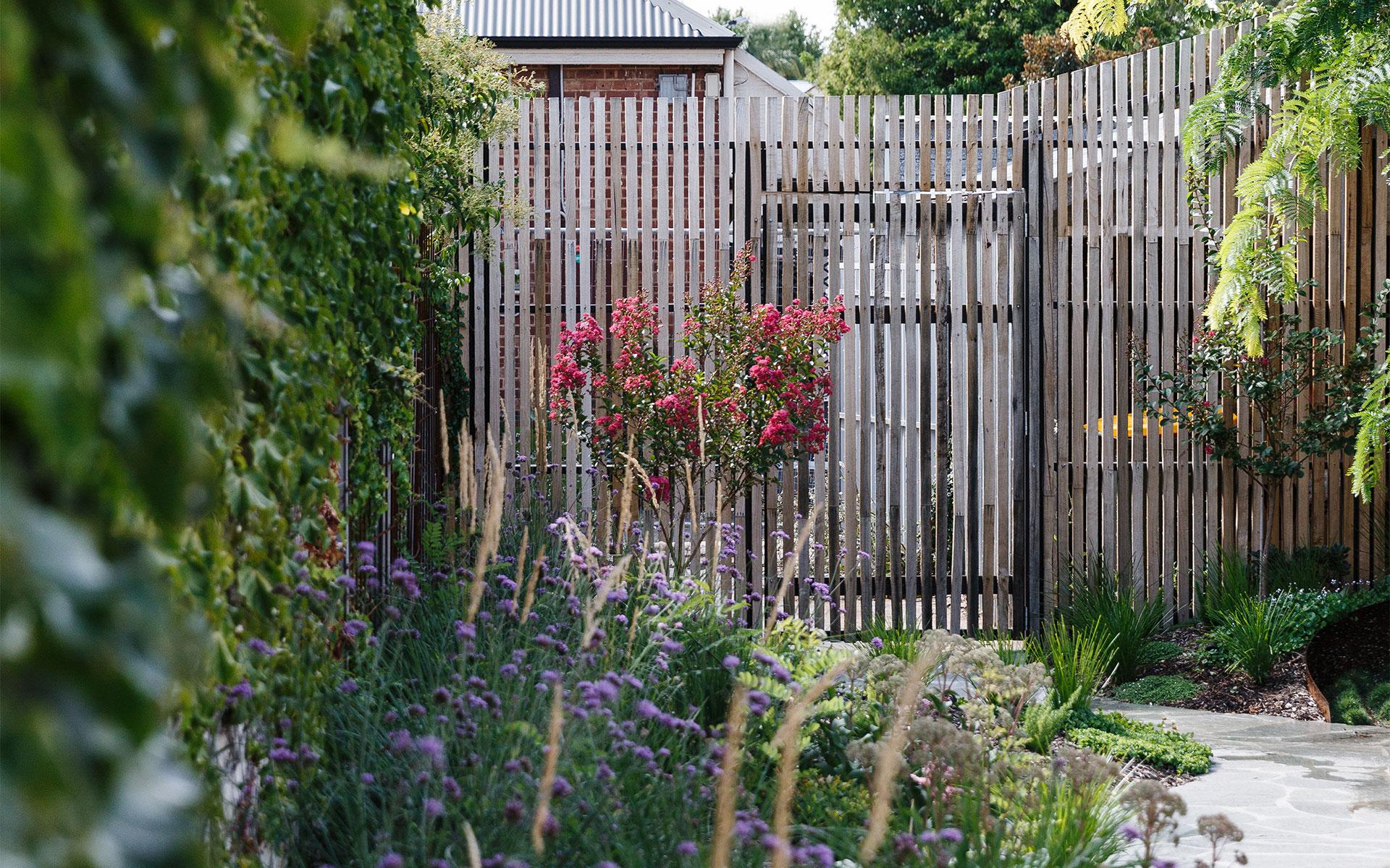 North Adelaide - LT   Design Landscape Architecture Pools